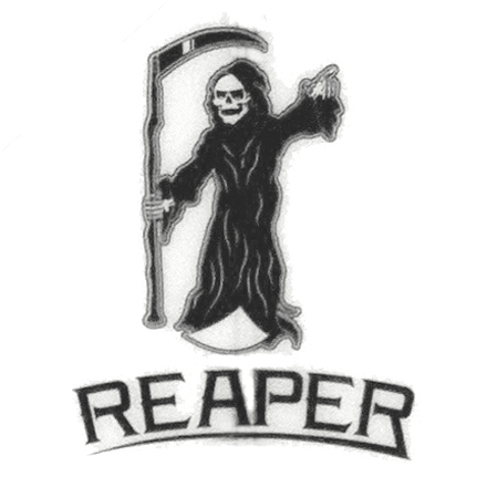 REAPER STACEY サーフボード