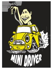 MINI DRIVER LOST サーフボード